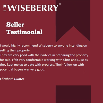 I WOULD HIGHLY RECOMMEND WISEBERRY TO ANYONE...