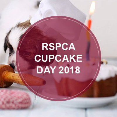 If the past was any indication, we took part in the RSPCA Cupcake Day 2018 fundraiser again this year. We all like sweets and animals so why not?!  If you aren't familiar with cupcake day, it's an opportunity to fundraise money for animals in need. It can